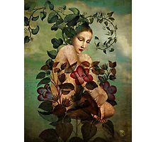 New Nature Photographic Print
