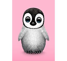 Cute Baby Penguin on Pink Photographic Print