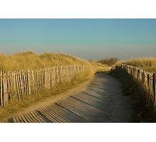 Path through the dunes Photographic Print