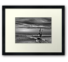 B/W stick in the sand Framed Print