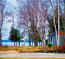 Springtime in Northern Ontario by Janet Gosselin
