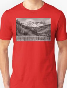 Valley and Rocky Mountains in Black and White Unisex T-Shirt