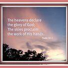 Glory by June Holbrook