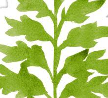 Lime Fern Sticker