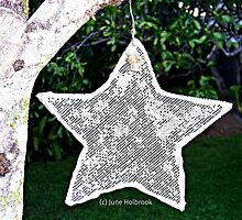 Star by June Holbrook