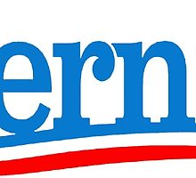 BERNIE SANDERS 2016 FOR PRESIDENT ELECT VOTE SUPPORT by colormecolorado