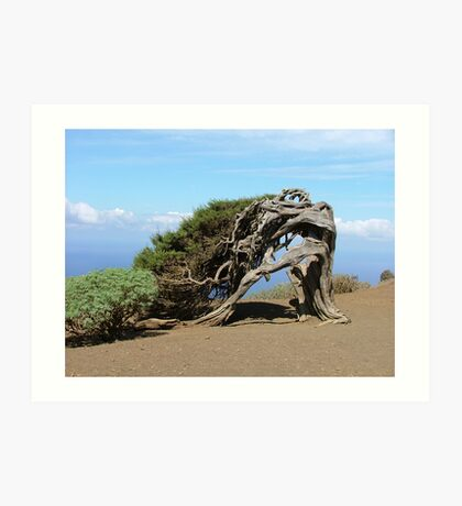Symbol of El Hierro Art Print