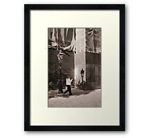 A Shadow Of The Light Framed Print