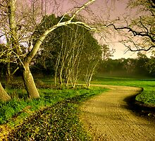 A bend in the road by zook