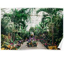 The Main Greenhouse Poster
