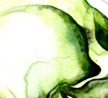 Painted Skull #2 Sticker