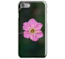 The First Colors of Spring iPhone Case/Skin