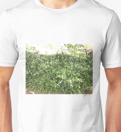 wild garden garlic Unisex T-Shirt