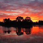 Sunrise Island Newy reservoir Cobar NSW by Ruth Anne  Stevens