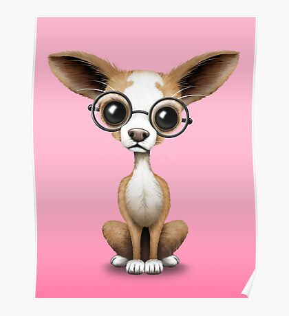 Cute Curious Chihuahua Wearing Eye Glasses Pink Poster