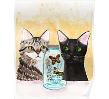 Butterfly Jar and Curious Cats Poster