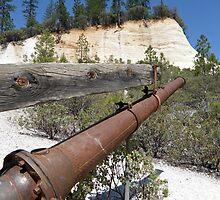 Washed Away ~ Hydraulic Mining by Patty Boyte