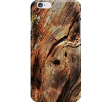 Twelve parts of a Tree (3) iPhone Case/Skin