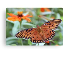 Beauty Times Two Canvas Print