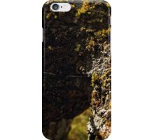Twelve parts of a Tree (6) iPhone Case/Skin