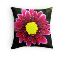 Daisy Burgundy Throw Pillow