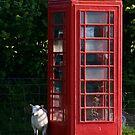 phone home by Mike Warman