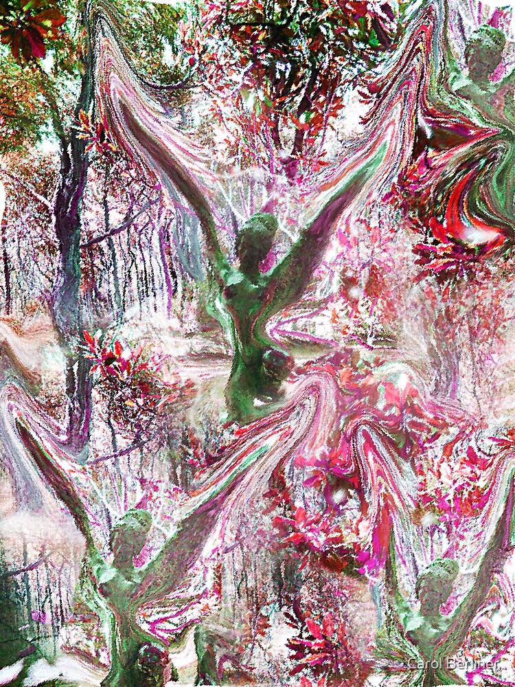 Warped Angels by Carol Berliner