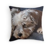 Dog snoozing on a lap Throw Pillow