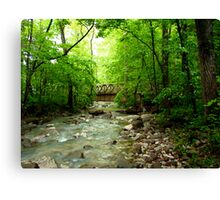 Lost Valley Bridge,  Buffalo National Wilderness  Canvas Print