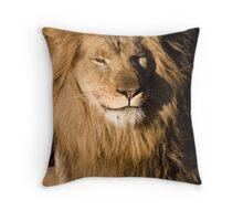 Zuri 2 Throw Pillow