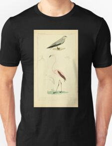 The Animal Kingdom by Georges Cuvier, PA Latreille, and Henry McMurtrie 1834 741 - Aves Avians Birds T-Shirt
