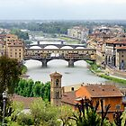 Bridges Over Untroubled Waters (Florence) by Harry Oldmeadow