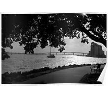 Sarasota Bayfront Park (Blue Ribbon Winner) Poster