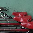 Photgraphy of Red Bike by Mel-D