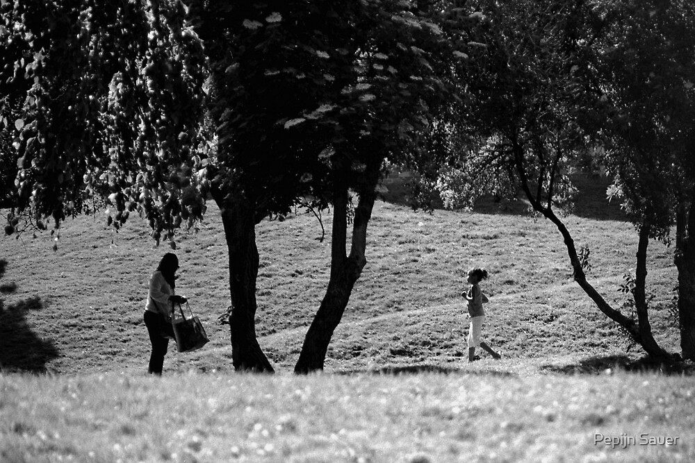 A Walk In The Park by Pepijn Sauer