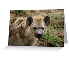 Deep Eyes Greeting Card