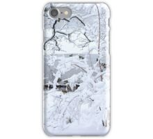 Central Park Winter 2014 iPhone Case/Skin