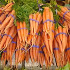 CARROT LEGUME by redskydawning