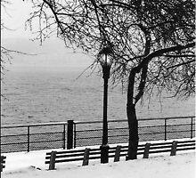 Riverside Park NYC by joeannNYC