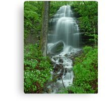 Waterfall south of Nashville, Tennessee Canvas Print