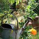 Summer Garden by naffarts