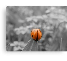 Just Red with Spots of Black Canvas Print