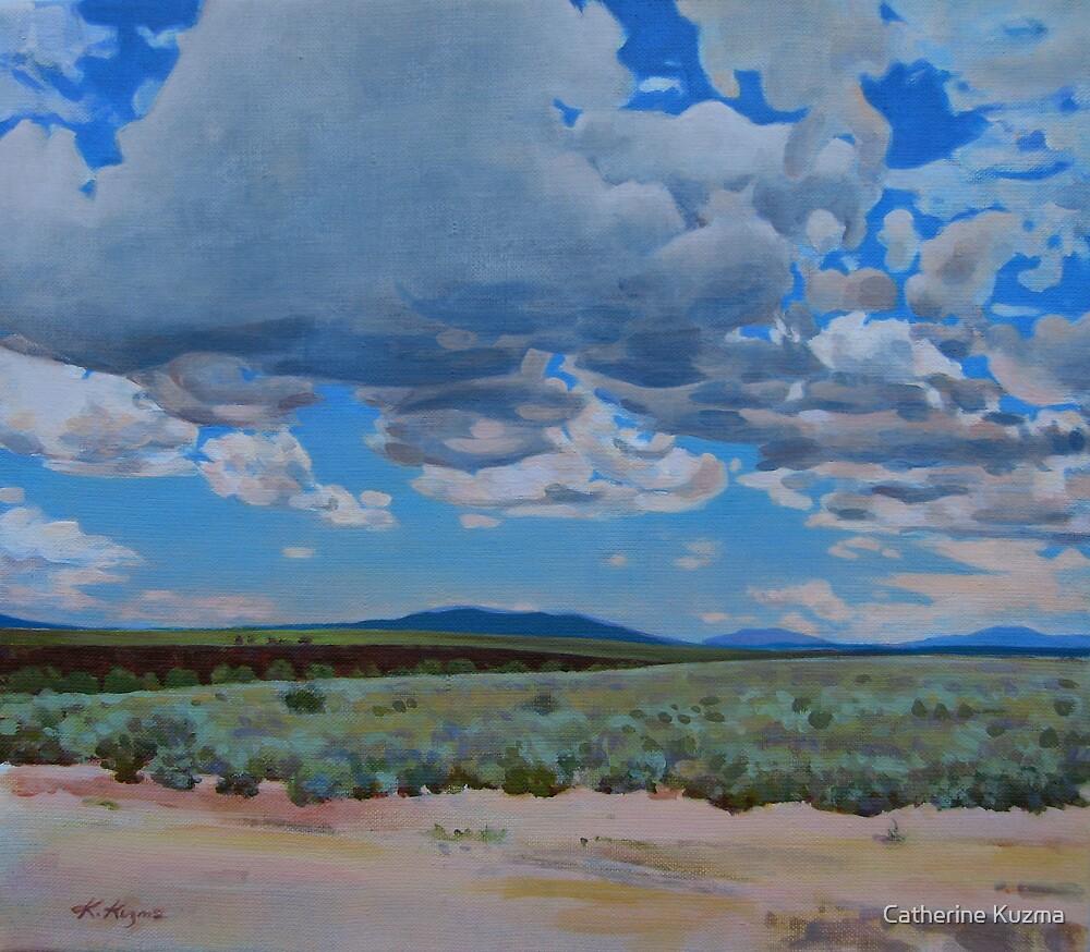Desert Sky by Catherine Kuzma