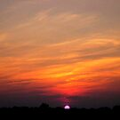 *JULY SUNSET* by Van Coleman