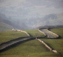 Cam Gill Road by SteveMG