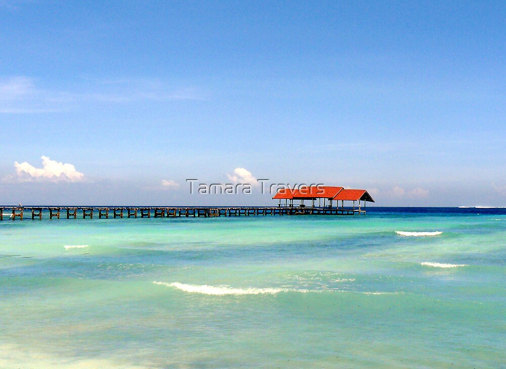The sea of blue by Tamara Travers