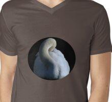 Swan Lake  Mens V-Neck T-Shirt