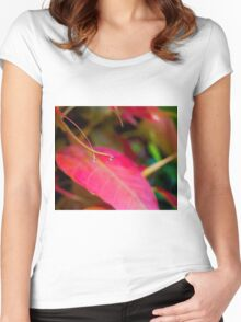 Orange Droplets Women's Fitted Scoop T-Shirt
