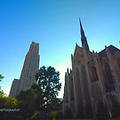 The two cathedrals by PJS15204