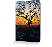 A Sunset & A Tree Greeting Card